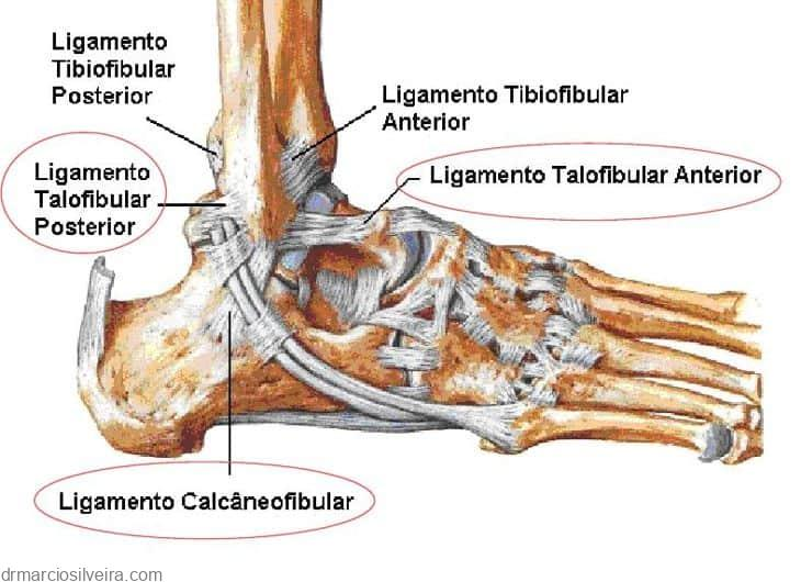 ligamentos laterais do tornozelo