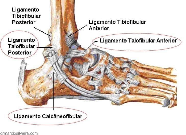 ligamentos laterais do tornozelo