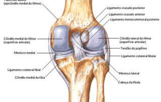 complexo ligamentar ou canto póstero-lateral